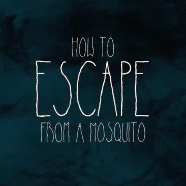 How to Escape from a Mosquito