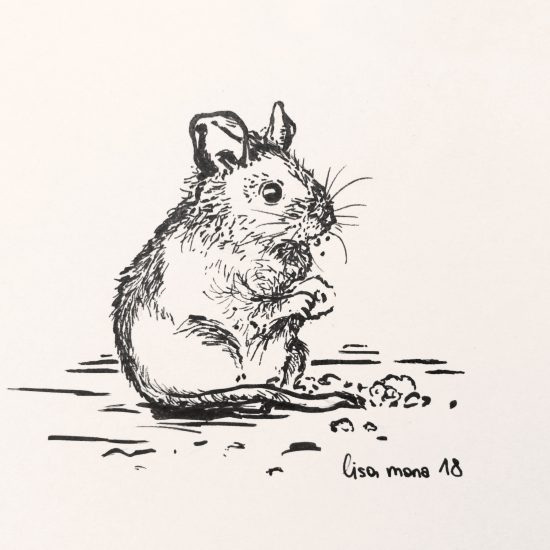 Inktober mouse, by lisa mona
